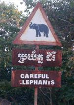 Careful: Elephants