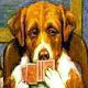 The Official Rules Of Tournament Poker