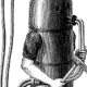 Explaining The 2016 US Election to an 1800s Deep Sea Diver
