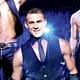 Magic Mike; Ted; Killer Joe; Lay the Favorite