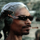Snoop The Hound!