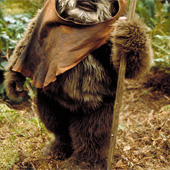 If Ewoks Were Introduced in Scripts Like Women