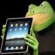 Frog Bog! (Part 1 of 2)