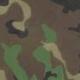 Army Combat Manual