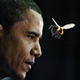 Highlights from Obama's Address If A Bee Had Flown In