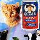 Milo & Otis + PHOTOSHOP!