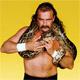Should You Buy a Pet Snake?