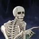 Spooky Skeleton GIFs!