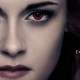 The Twilight Saga: Breaking Dawn - Part 2; Lincoln; This Must Be the Place; Here Comes the Boom