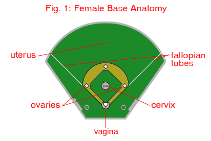 1st-base-2nd-base-3rd-base-dating-three-breasted-girls