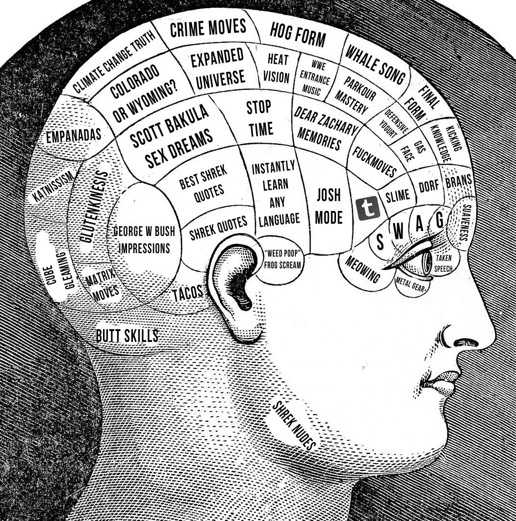How To Use My Full Brain Capacity