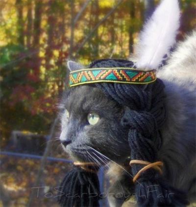 a6ca242e912 Halloween SWAT 2014 Booooorrendous Cat Costumes