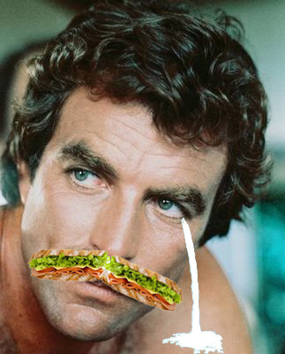 Selleck Waterfall Sandwich. Selleck Waterfall Sandwich