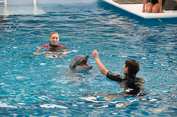 Dolphin looks pretty happy to me. What's the problem?